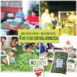 BAFRA GIDA Ticaret Şti. Ltd: Barış Sokak. NO: 1. Demirhan. Lefkoşa / Kıbrıs