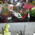 Çiçeğin Sanata Dönüştüğü Tek Adres Arjin Çiçekçilik