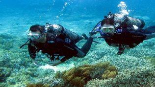 Kıbrıs'ta Su Altı Dalışı